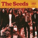 Seeds sundazed