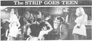 Strip Article crop
