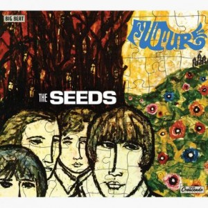 The Seeds - Fallin' Off The Edge-Relics